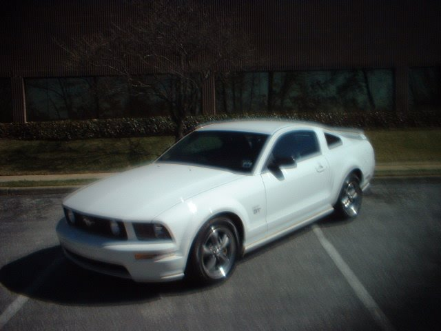 2001 Ford Mustang Nhra. FORD MUSTANG GT 2006